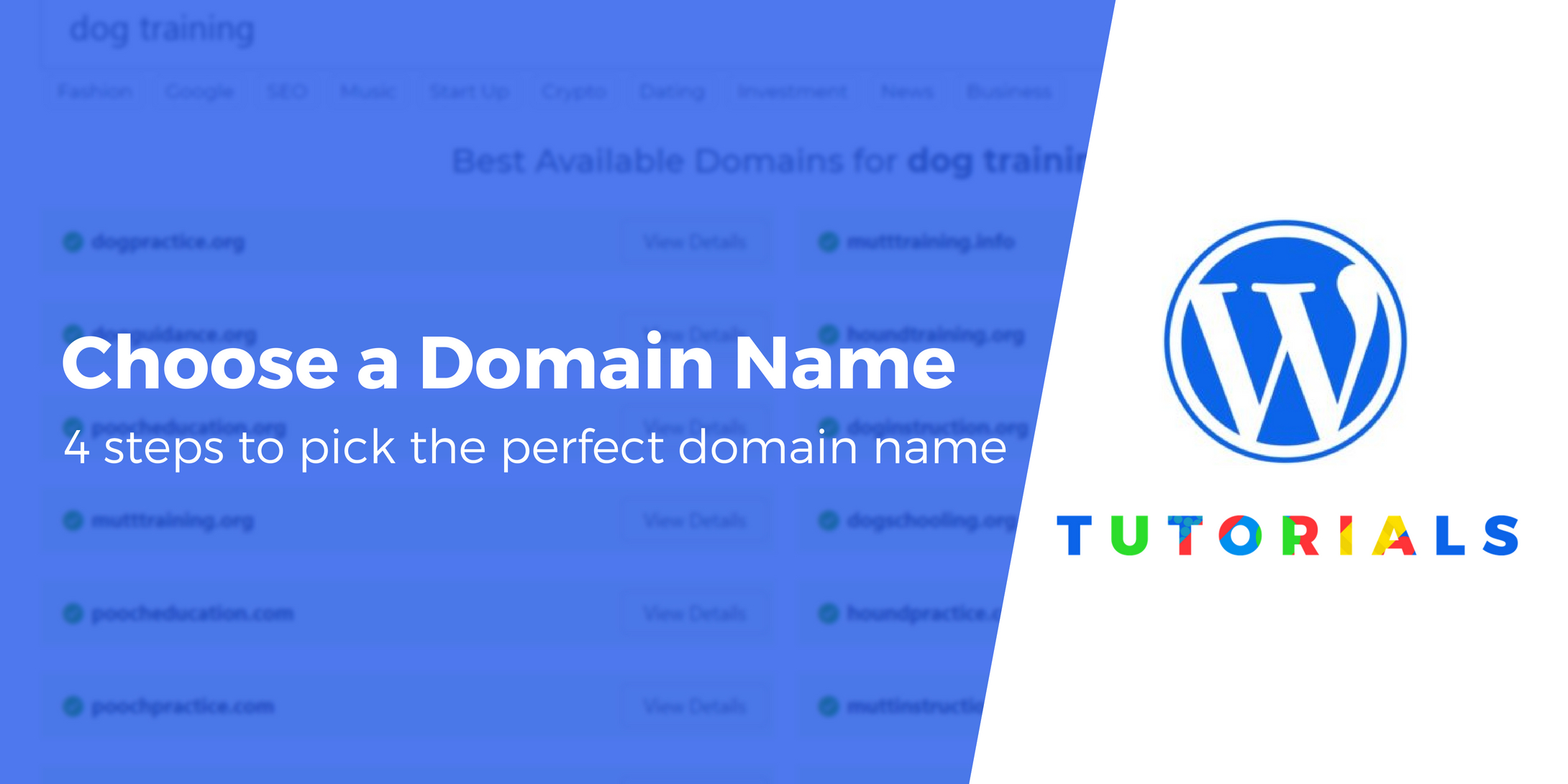 How to choose a domain 16